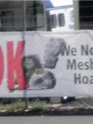 Mesh Hoarding