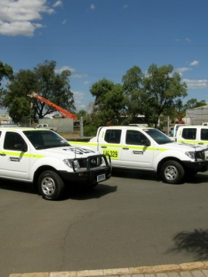 Fleet Marking Vehicles